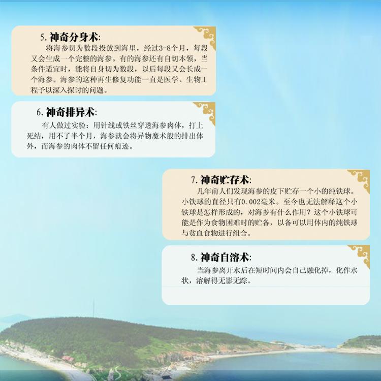 海参粉冻干机3.jpg
