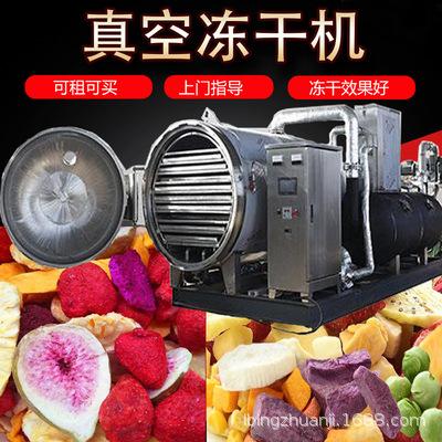 小型果蔬水果真空冻干机,食品水果