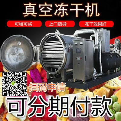 小型果蔬水果真空冻干机,食品水果冷冻干燥冻干机
