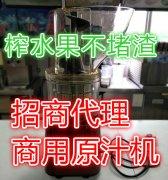 大型螺旋榨汁机,螺旋推进器榨汁机,低速挤压榨汁机,低速挤压式榨